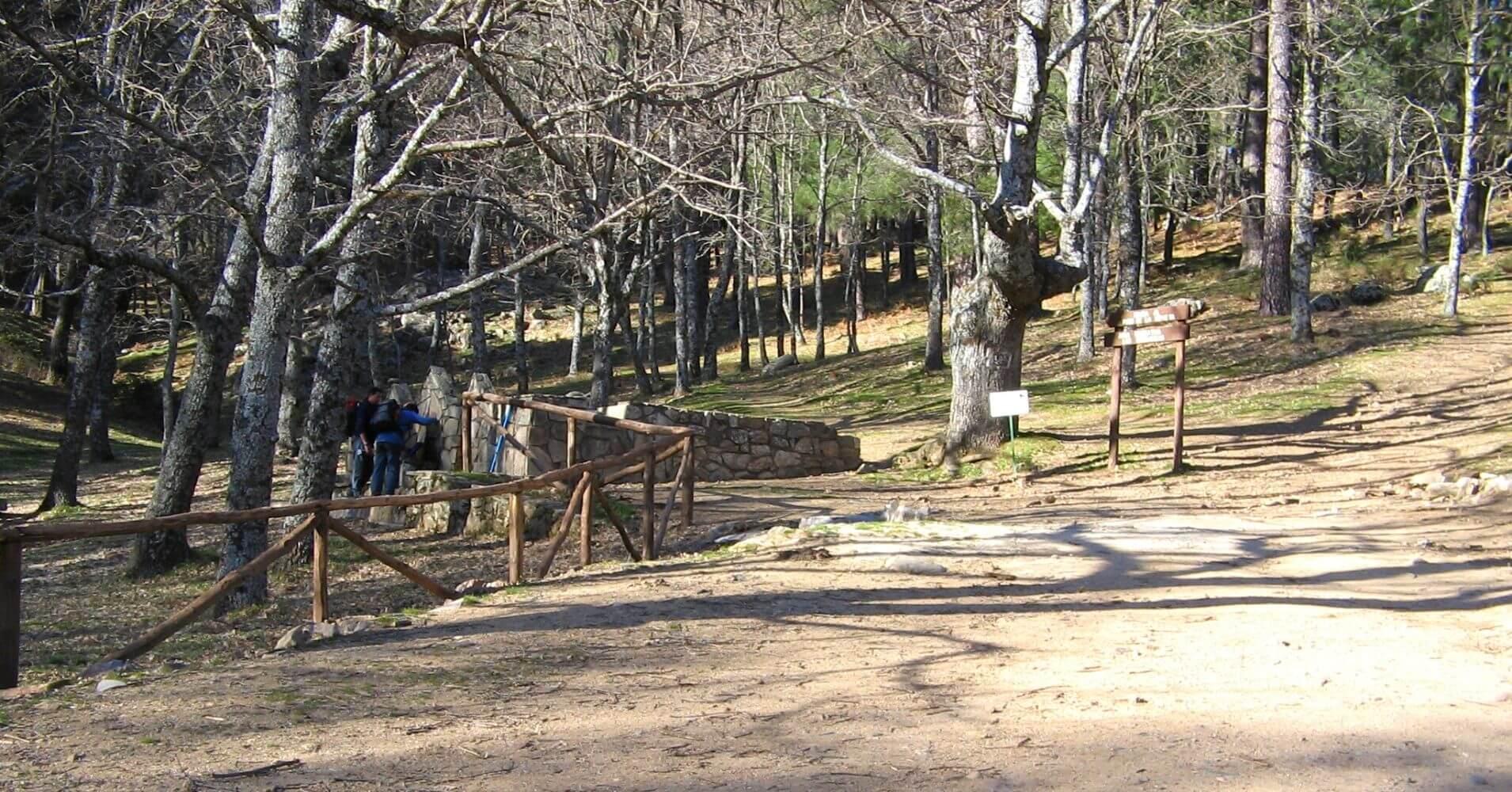 Área Recreativa del Valle de Iruelas. Ávila. Castilla y León.