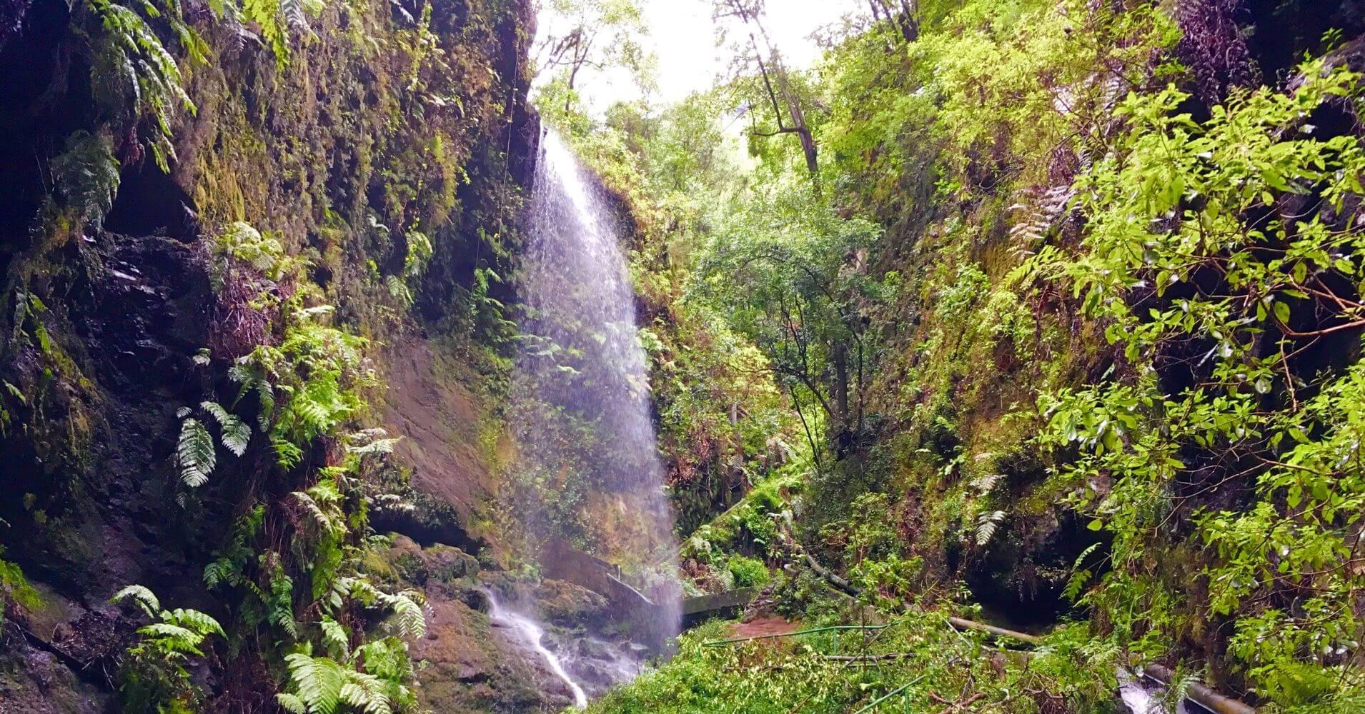 Cascada de los Tilos. Isla de La Palma en Invierno. Islas Canarias.