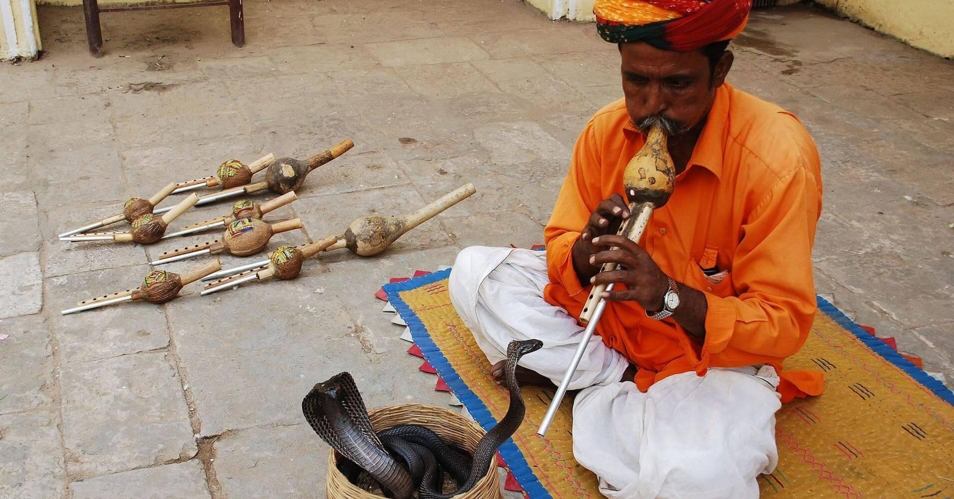 Encantador de Serpientes. La India.