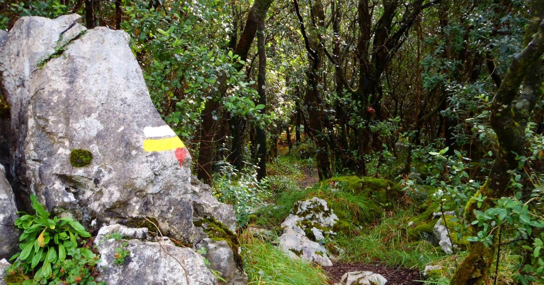 Sendero descenso de la vía, Ramales de la Victoria. Cantabria.