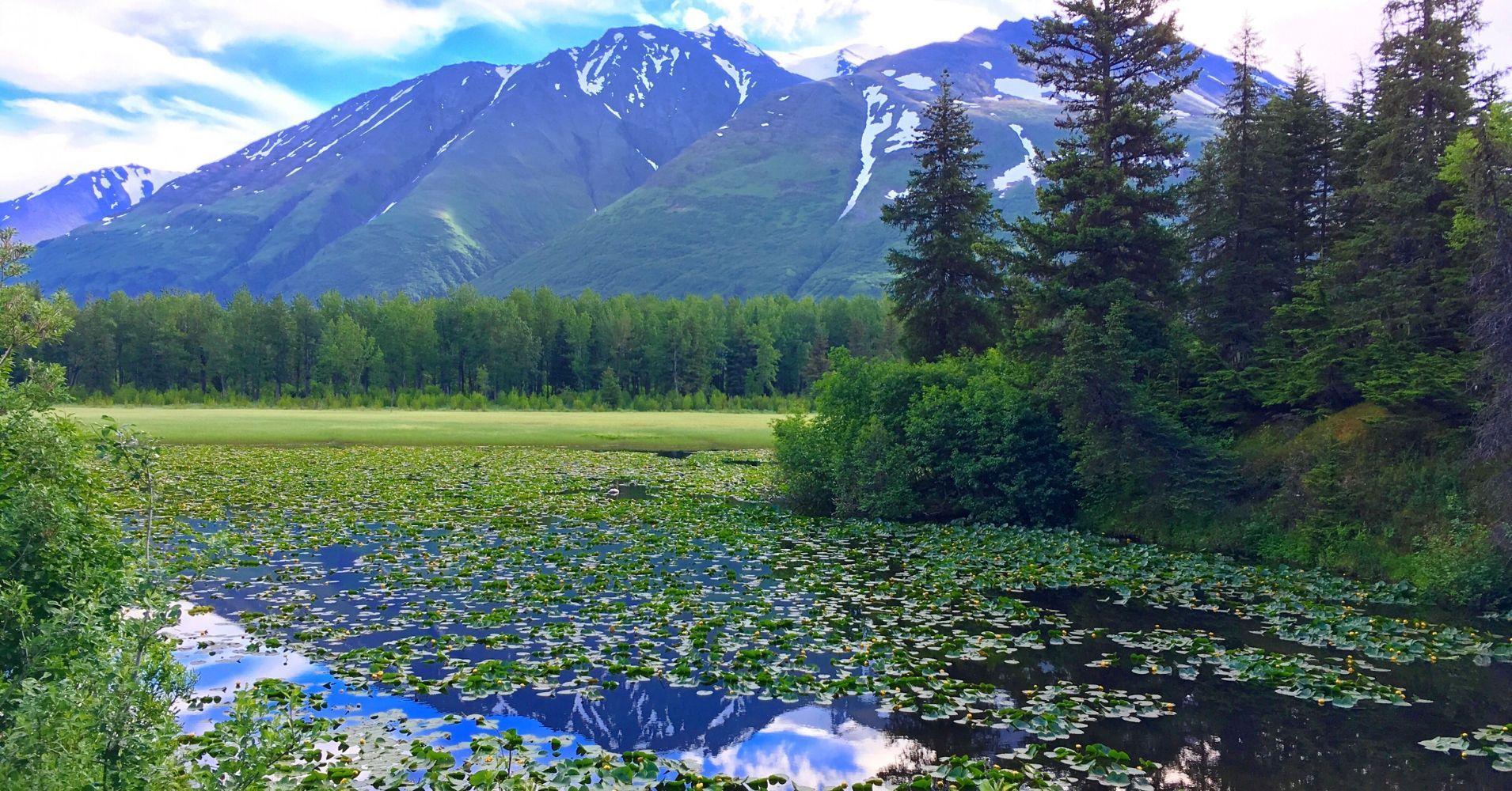 Siete días en Alaska. Estados Unidos.