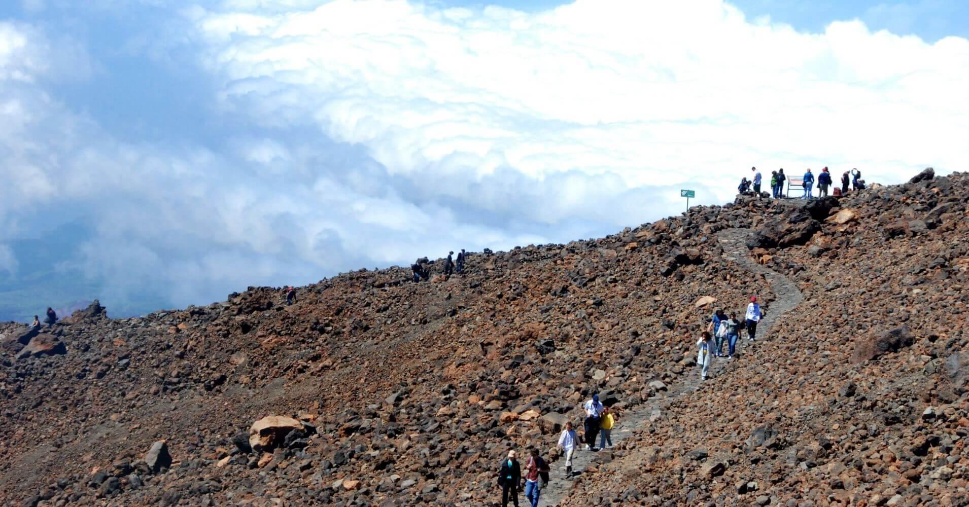 Parque Nacional de las Cañadas del Teide. Isla de Tenerife. Islas Canarias.