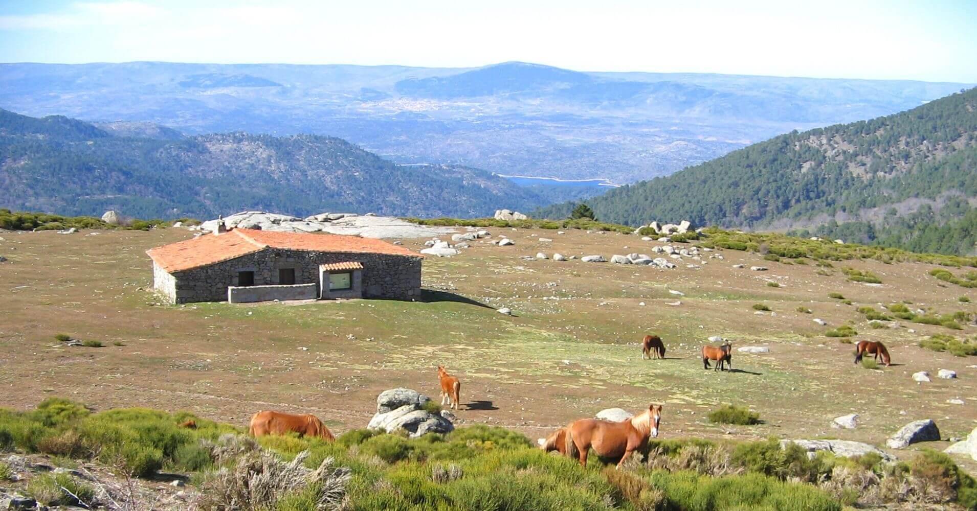 Pradera del Pozo de la Nieva, Valle de Iruelas. Ávila. Castilla y León.