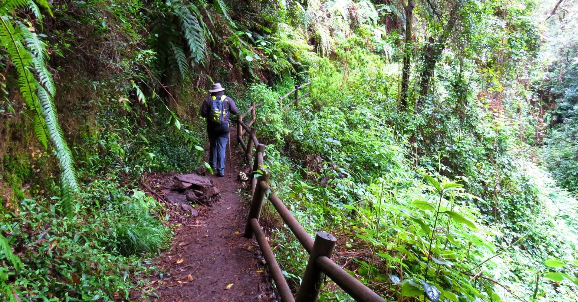 Ruta de El Cubo de la Galga. La Palma en Invierno. Islas Canarias.