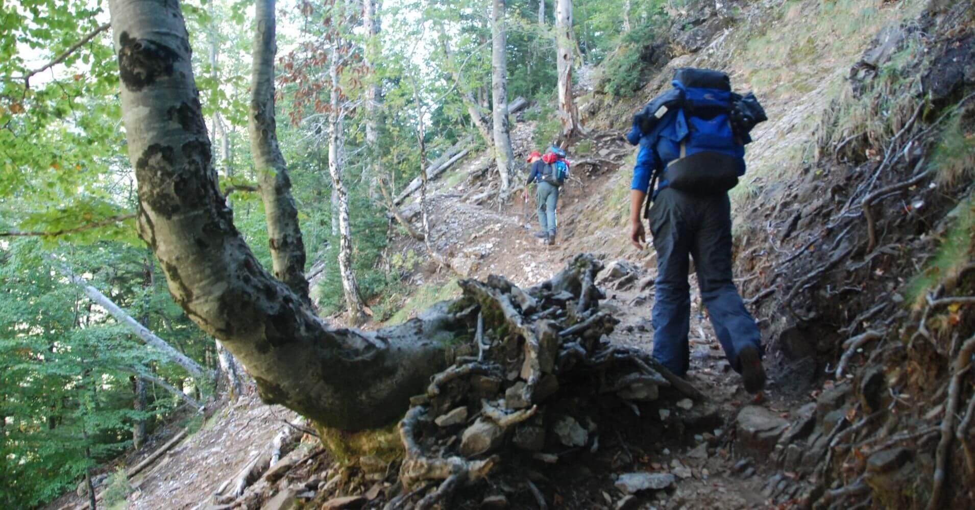 Senda de los Cazadores. Parque Nacional de Ordesa. Huesca.