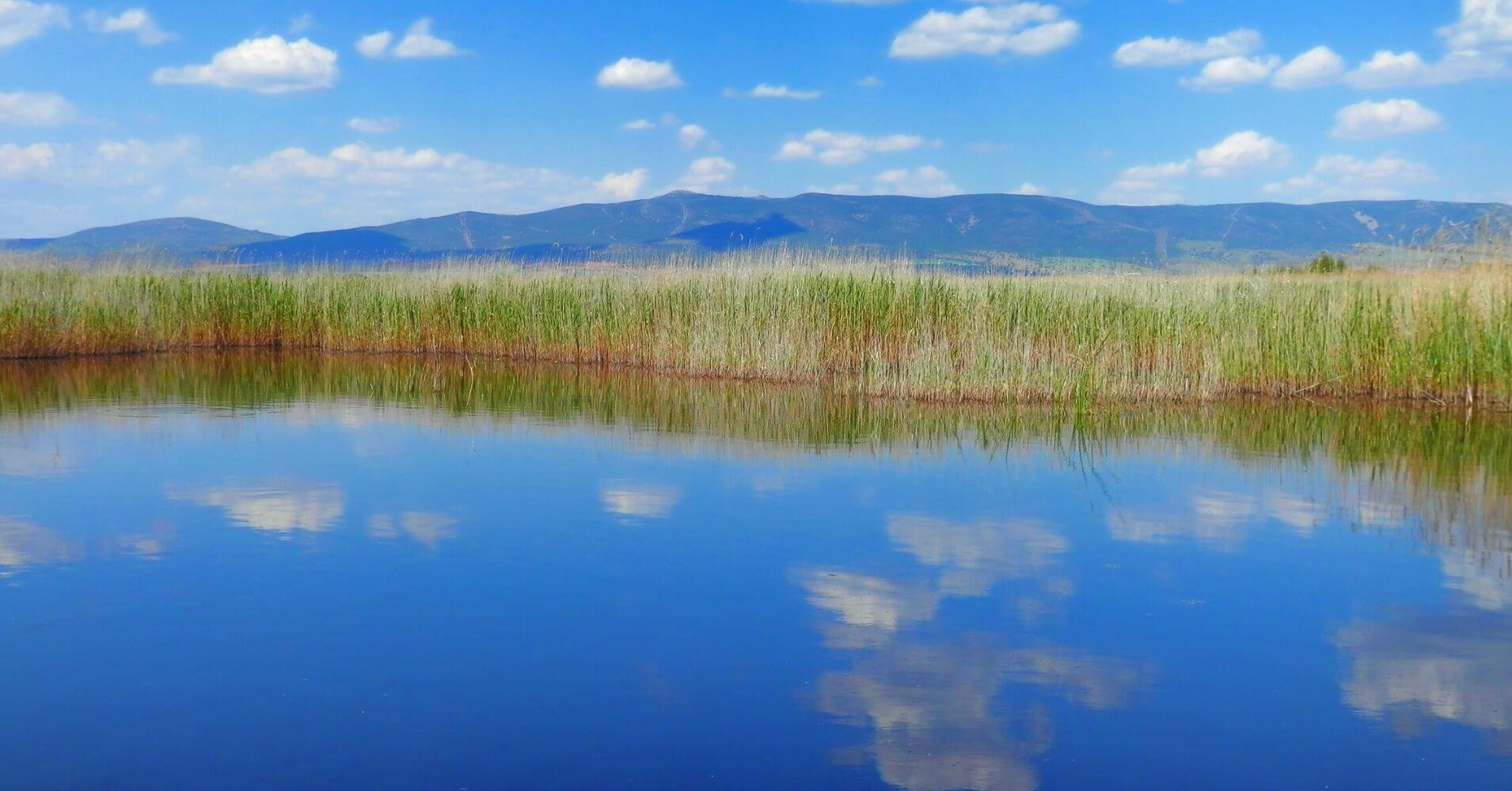 Tablas Espejo Manchego. Parque Nacional de las Tablas de Daimiel. Ciudad Real, Castilla la Mancha.