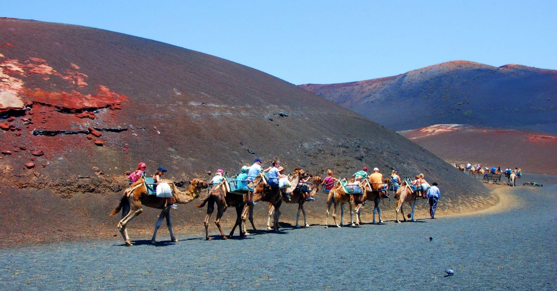 Travesía en Camello del Parque Nacional de Timanfaya. Lanzarote, Islas Canarias.